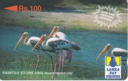 TARJETA DE SRY LANKA DE Rs.100 DE UN PAINTED STORK (32SRLE) BIRD-PAJARO - Sri Lanka (Ceilán)