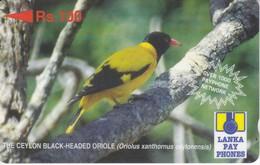 TARJETA DE SRY LANKA DE Rs.100 DE UN CEYLON BLACK ORIOLE (28SRLC) BIRD-PAJARO - Sri Lanka (Ceilán)