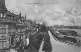 LUGWIGSHAFEN A. Rh. GERMANY~OBERES RHEINUFER~EISENBAHN1907 PHOTO POSTCARD 42996 - Ludwigshafen