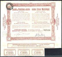 SOCIETE DES PLANTATIONS D'ASAHAN - 1 ACTION DE 5 FLORINS AU PORTEUR - SUMATRA - 1936 - Bruxelles. - Landwirtschaft