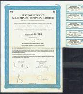 BLYVOORUITZICHT GOLD MINING COMPANY, Limited - Afrique Du Sud - CERTIFICAT Représentant 10 ACTIONS - 1987 - Bergbau