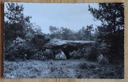 56 : La Gacilly - Les Tablettes De Cournon - Dolmen - (n°16847) - La Gacilly