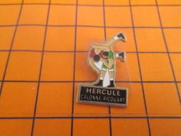 210c PINS PIN'S / Beau Et Rare : Thème SPORTS / LUTTE CLUB CALONNE RICOUART - Worstelen
