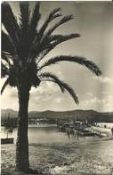 Ibiza (Isole Baleari, Spagna) San Antonio Abad, Vista Parcial, Al Fondo Hotel Bahia - Ibiza