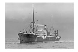 WACHTFELS Hansa Line Ship C1913 At Port Melbourne Australia  6x4... Modern Digital Photo Postcard - Piroscafi