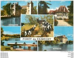 Photo Cpsm Cpm 35 PAIMPONT. Forêt 1966 - Paimpont