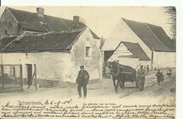 CP.Bruxelles-Schaerbeek (ex-Collection DELOOSE) - La Grande Rue Au Bois 1904 (NB) - W0344 - Schaerbeek - Schaarbeek