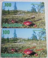 Magadan. Spherecom. Mushrooms 2 Different Cards. - Russia