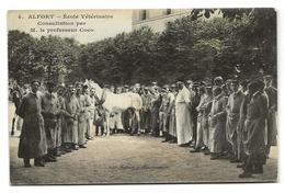 Maisons - Alfort (94) Ecole Vétérinaire Consultation Par M. Le Professeur Coco - Maisons Alfort
