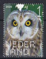 Nederland - 2 Januari 2020 - Beleef De Natuur - Roofvogels & Uilen - Velduil - MNH - Eulenvögel