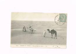 Dunes De Sable Du Sahara.Expédié à Bruxelles,redirigé Sur Dilbeek. - Algerien