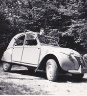 5 PHOTOS ANCIENNES CITROEN 2 CV - Automobiles