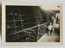 Photographie Acienne Bourgival Femme Et Enfant Devant La Machine De Marly Pompage Eaux De La Seine - Places