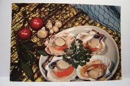 LES  COQUILLES  ST-JACQUES     - ( Pas De Reflet Sur L'original ) - Recettes (cuisine)
