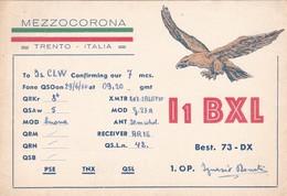 CARTOLINA RADIO QSL - MEZZOCORONA ( TRENTO) VIAGGIATA PER BOVISIO ( MONZA E DELLA BRIANZA) - Trento
