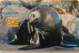 TAAF  -  Otarie à Fourrure - TAAF - Franse Zuidpoolgewesten