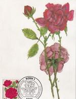 Germany 1982 Maximum Card: Flora ; Rose Roses Rosen; Art Paintings Aquarell Von Paul Seuthe: Bourbon Rose - Rosen