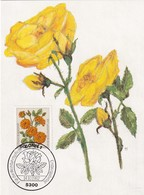 Germany 1982 Maximum Card: Flora ; Rose Roses Rosen; Art Paintings Aquarell Von Paul Seuthe: Floribunda - Rosen