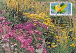 Germany 1983 Maximum Card: Flora Flowers Fleur Blumen: Internattional Garden Exhibition München; Gartenbau - Pflanzen Und Botanik
