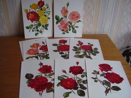 Lot Chromos Images Vignettes Artis *** Les Roses *** - Albums & Catalogues