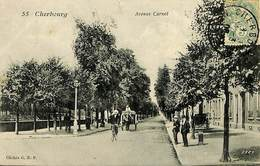CPA - France - (50) Manche - Cherbourg - Avenue Carnot - Cherbourg