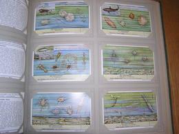HET ZEEPLANKTON Le Plancton Mer Liebig Série Reeks 6 Chromos Nederlandse Taal Trading Cards Chromo - Liebig