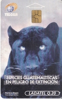 TARJETA DE GUATEMALA DE UNA PANTERA NEGRA (PHANTER-LEOPARD) - Guatemala