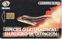 TARJETA DE GUATEMALA DE UNA LAGARTIJA (LADATEL) - Guatemala