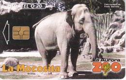 TARJETA DE GUATEMALA DE LA MOCOSITA (ELEFANTE-ELEPHANT) (LADATEL) - Guatemala