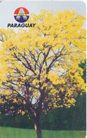 TARJETA DE PARAGUAY DE 10 IMPULSOS DE UN LAPACHO EN FLOR (FLOWER) - Paraguay