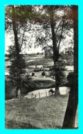 A796 / 635  59 - WATTEN Vue Prise De La Montagne - Sonstige Gemeinden