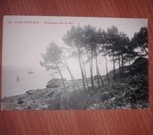 Lot De Deux Cpa Des îles Chausey No 40 écrite Et 41 Non écrite Des éditions Puel - Granville