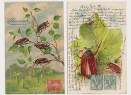 2 Cpa Fantaisie Gaufrées / Hannetons - Insectes