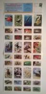 Bloc De Timbres / USA / 36 Vignettes Neuves / AMERICA'S CONSERVATION STAMPS 1989 National Wildlife Federation - Erinnophilie