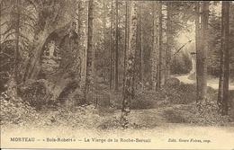 MORTEAU - 25 - Doubs - La Vierge De La Roche Bercail - Bois Robert - Autres Communes
