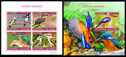 SIERRA LEONE 2019 - Kingfishers. M/S + S/S Official Issue [SRL191115] - Sierra Leone (1961-...)