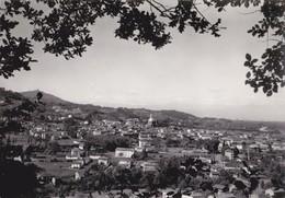 00157 - GASSINO - PANORAMA - Altre Città