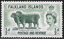 Falkland: Montone, Sheep, Mouton - Andere