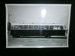 BUS 1940. (Carr.Maes Antwerpen) - Automobiles