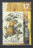 Ca Nr 2709 - België