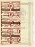 NAVIGATION MARITIME  1924 PLISSON CIE DES CHARGEURS FRANÇAIS V.HISTORIQUE ET COTATION B.E. - Tourisme