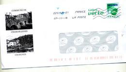 Pap Carte Verte  Flamme Chiffree  Illustré Chamarandes - Entiers Postaux
