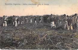 ARGENTINA Argentine - Indios Cosechando Cana De Azucar ( Canne à Sucre ) CPA AMERIQUE DU SUD South America Sudamerica - Argentinien