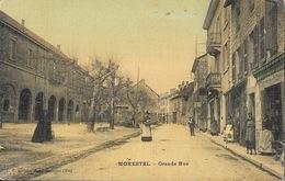 Morestel (Isère) Grande Rue, Belle Animation - Edition E. Vialatte - Carte Colorisée Toile Et Vernie - Morestel