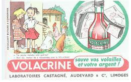 Buvard VOLACRINE Sauve Vos Volailles Et Votre Argent Laboratoires Castané, Audevard & Cie à Limoges - Agriculture