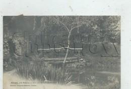 Riorges (42) : La Passerelle Dans Le Parc Au Prieuré En 1904 PF - Riorges