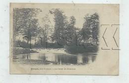 Riorges (42) : Le Barrage Sur La Renaison En 1904 PF - Riorges