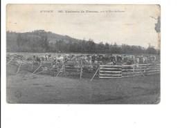AVEYRON - Vacherie De Venzac, Près Le Mur-de-Barrez. (Vache) - France