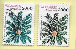 TIMBRES - STAMPS - MOZAMBIQUE / MOÇAMBIQUE (1993) - PLANTS - Equisetum Ramosissium - TIMBRES OBÇITÉRÉS - Piante Velenose