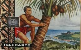 WALLIS-et-FUTUNA - Cueillette Du Coco - Wallis Und Futuna